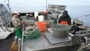 Sound Leader Seafoods work day