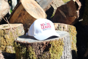 Sound Leader Cap