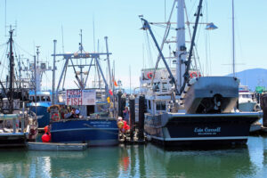 Market Day at Sound Leader Seafoods
